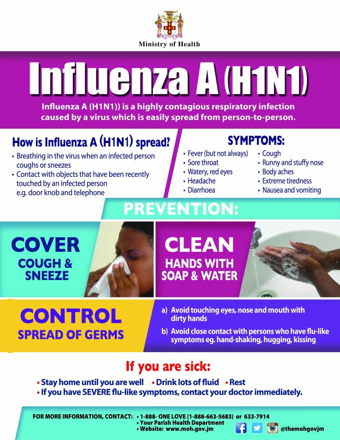 InfluenzaA (H1N1) FLYER 2016(7).jpg